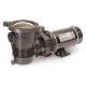 BOMBA PENTAIR OPTIFLOW DE 3/4HP